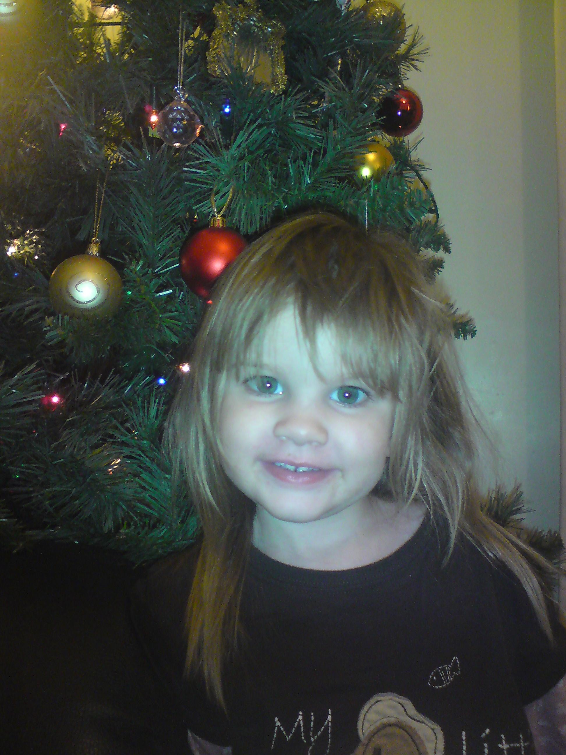 Bonnie Loves The Christmas Tree